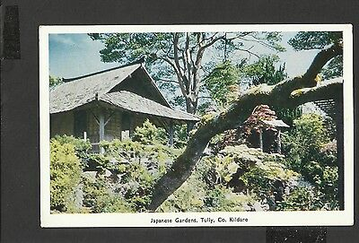 Vintage Colour Postcard General View Japanese Gardens Tully Co. Kildare Ireland