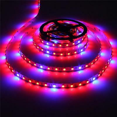 5M LED Grow Light strip Lamp Full Spectrum Blue Red Hydroponic Greenhouse Plants