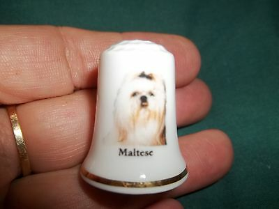vintage MALTESE Dog Collectible ceramic Thimble figurine Lim.Edition