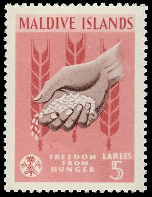 MALDIVE ISLANDS 118 (SG119) - Freedom from Hunger Campaign (pa79884)