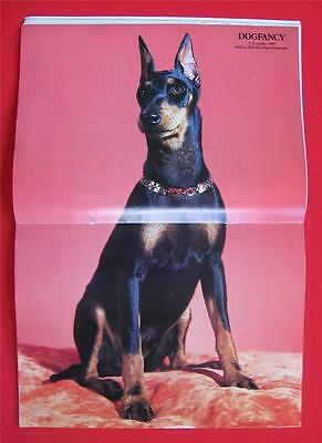 RARE Collectible ~ MANCHESTER TERRIER Issue ~ DOG FANCY Magazine ~ Nov 1991 #