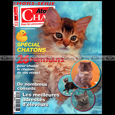 Atout Chat Hs 62 Special Chatons Bengal Devon Rex Maine Coon Abyssin Bleu Russe