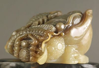 Beautiful Chinese old natural hetian jade hand-carved dragon 金蟾 statue 3.3 inch