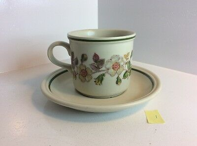 """"""" Autumn Leaves""""  Cup And Saucer"""