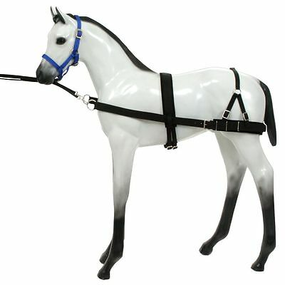 Tough 1 Foal Horse Nylon Neoprene Strong Training Device