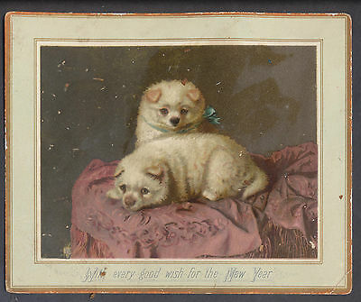 C11326 Victorian Prize New Year Card: Dogs, H H Couldery