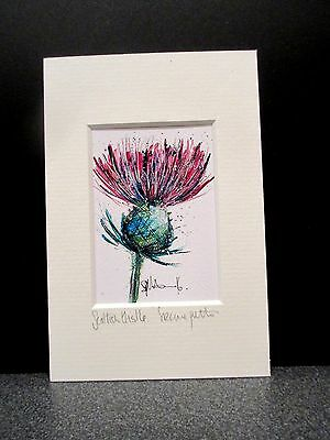 Scottish Thistle. Mini Art print from an original painting by Suzanne Patterson.
