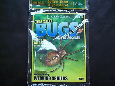 National Geographic Real-life Bugs & Insects magazine Issue 11