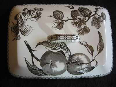 "VICTORIAN BURGESS & LEIGH BLACK TRANSFER FRUIT PATTERN 8.75"" TUREEN LID c.1860"