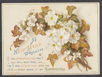 C11414 Good Victorian Tuck Religious New Year Card: Scripture