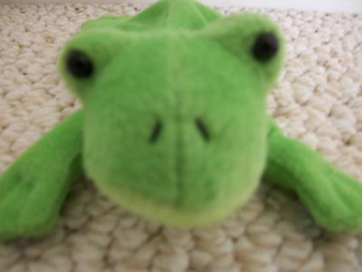 Green Frog Toy was produced by Zangeen International in 2008 (#0253)
