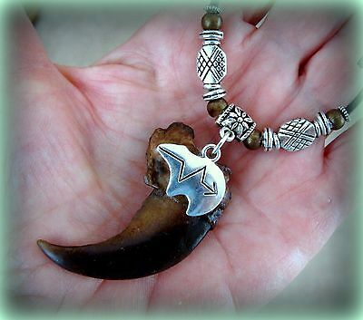 BEAR CLAW replica NECKLACE Jewelry Pendant - Wild Animal CLAW Indian style