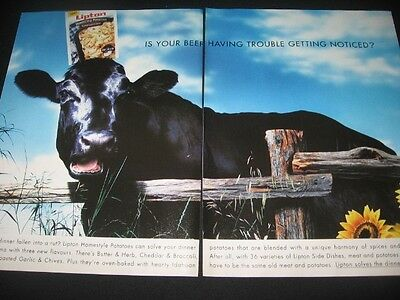 COWS in magazine ads/clipping lot * pictures