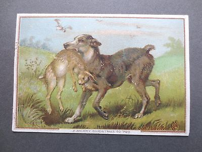 ANTIQUE Christmas Card An Old Poacher Painting of Dog with Hare in his Mouth