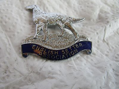Badge English Setter Association Mint Stunning