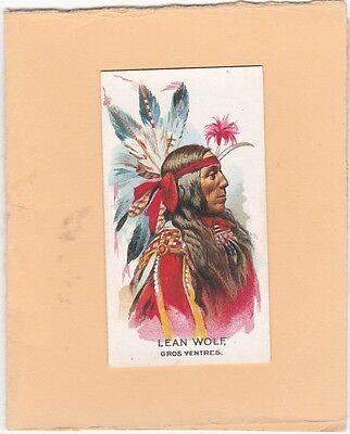 GANONG BROS (CANADA) SCARCE CARD FROM BIG CHIEF.No.40.LEAN WOLF. ISSUED 1925