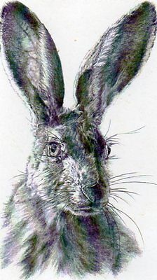 GORGEOUS ART postcard of BROWN HARE by VIVIENNE COLEMAN