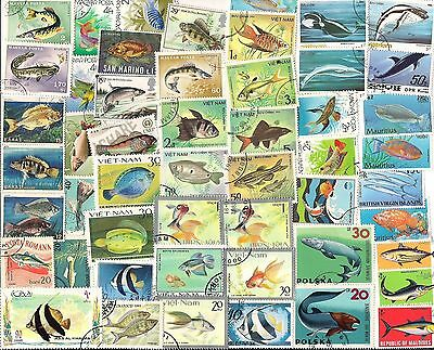50 Different Used Stamps Fish