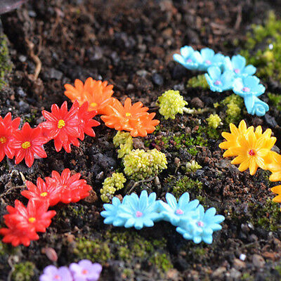 10Pcs Miniature Moss Flower Bonsai Pot Crafts Fairy Garden Micro Landscape Decor