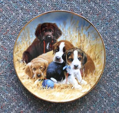 Porcelain Hunting Dog 3 Puppy Plate Brittany Spaniel Golden Retriever Pointer