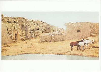 Acoma Pueblo and Horses in 1900 New Mexico Native American Modern Postcard