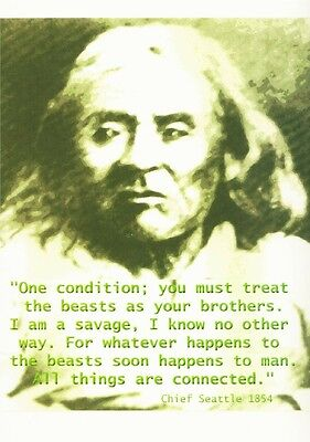Chief Seattle All Things Are Connected Native American Quote Postcard