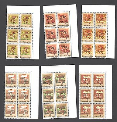 ZIMBABWE 1992 MUSHROOMS  Blocks  MNH