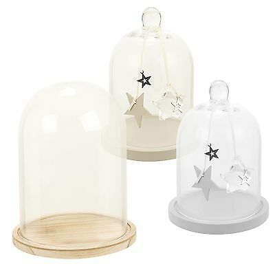 Glass Display Dome Cloche With Base Decorative Office Desk Vintage Stand Jar NEW