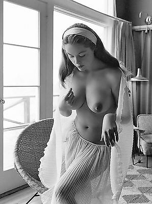 Diane Webber 1960s Very Big breasts vintage nude Pinup 8 x 10 Photograph