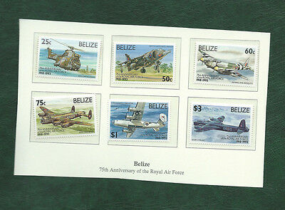 Belize 1993 RAF Anniversary stamps MNH
