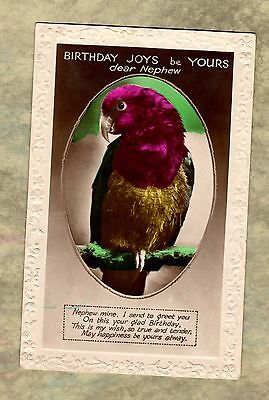 Postcard ~ BRIGHTLY COLOURED PARROT MACAW ~ Early