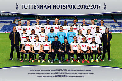 Tottenham Hotspur FC Poster - Team 16/17 - New Spurs Football poster SP1419
