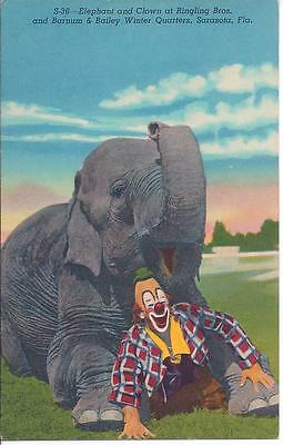 1950's - RINGLING BROS & BARNUM & BAILEY POST CARDS -S-39 - LOU JACOBS