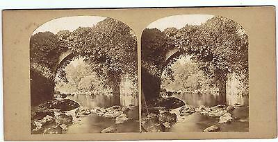 Stereoview - View In The Dargle Co Wicklow Ireland