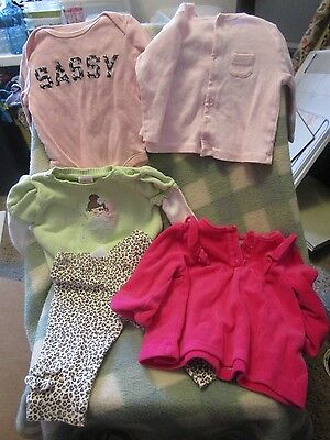 Lot of Fall/Winter Infant Clothing - Girls 3-6M (5 pieces)
