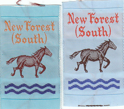 Boy Scout Badges ribbon NEW FOREST (SOUTH) District x 2 varieties