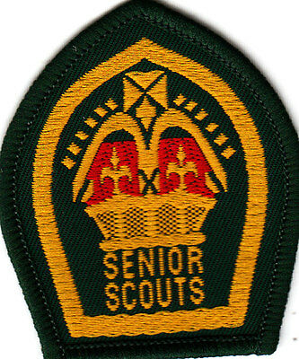 Boy Scout Badge 1960`s repro SENIOR SCOUTS QUEEN Scout Award
