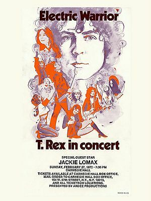 """T Rex Carnegie Hall 16"""" x 12"""" Photo Repro Concert Poster"""