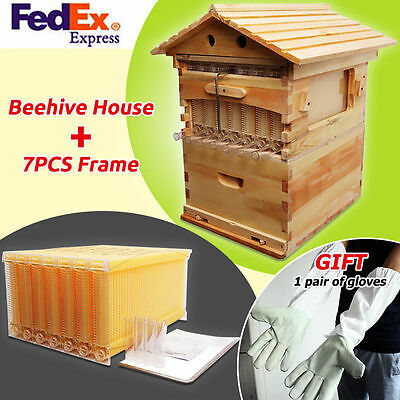 Newest Beehive Wooden House Box + 7 PCS Beekeeping Frames Hive Flux Honey