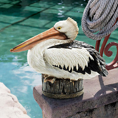 Pelican Ocean Seaside Dock Beach Piling Perch Bird Pool Pond Garden Statue