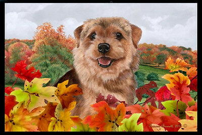 Indoor/Outdoor Fall Floor Mat - Norfolk Terrier 40225