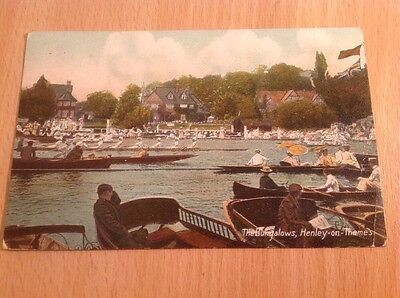 Postcard Henley-On-Thames  Berks. 'The Bungalows Rowing Regatta' 1910
