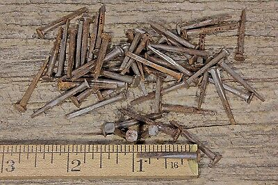"1""~ OLD BRAD NAILS 50) in lot REAL vintage 1850's square antique rusty patina"