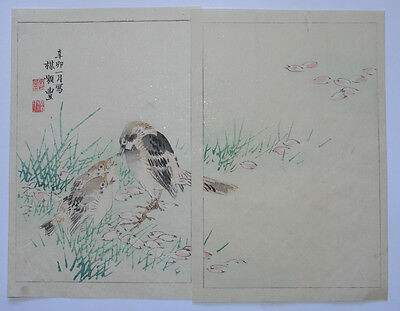 SPARROW, CHICKS & CHERRY : OLD 1890s JAPANESE WOODBLOCK PRINT - WATANABE SHOTEI