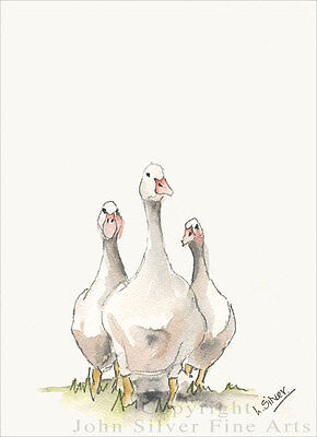 GEESE PORTRAIT ORIGINAL WATERCOLOUR PAINTING by UK Artist LESLEY SILVER. BA