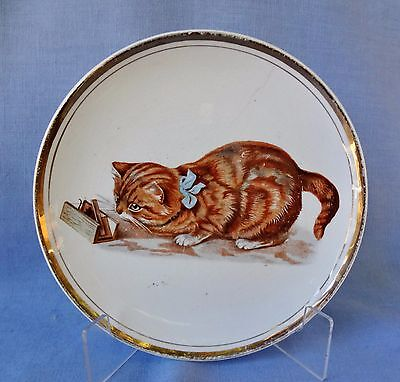 TABBY CAT W/ MOUSE IN TRAP Vintage Plate By Dresden China