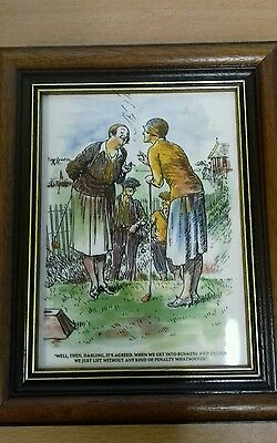 amusing framed  golfing picture
