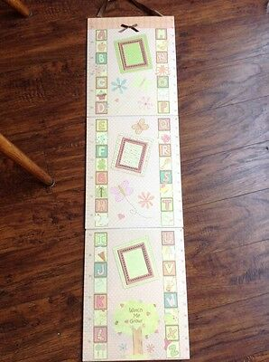 CR Gibson Growth Chart ~ Up To 5 Ft Holds 3 Photos