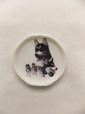 Siberian Husky Dog 3 View Porcelain Plate Magnet Fired Decal- 79