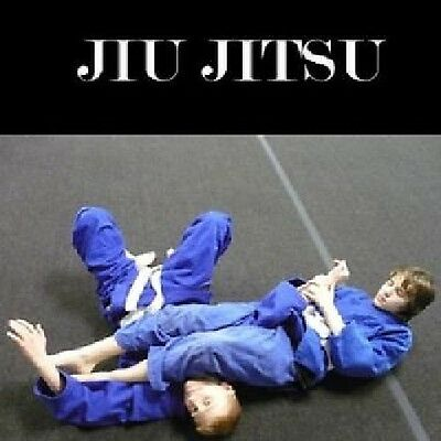 D176  Learn Ju-Jitsu Beginner's Step By Step Workout Training Dvd